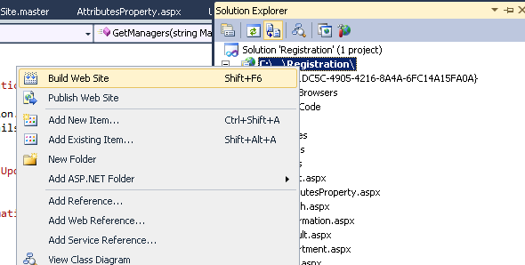 Integrating ASP NET Web Application In IIS