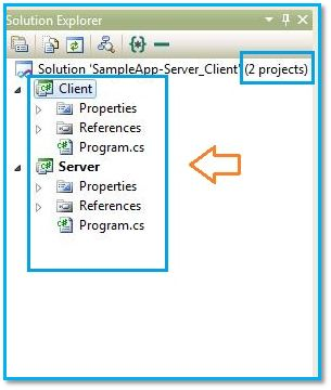 Set Multiple Startup Projects in Visual Studio
