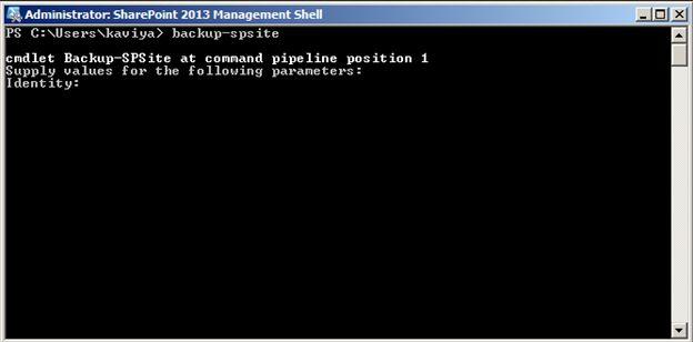 Backup-spsite