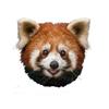 Smiley Panda (Birbal Zimba)