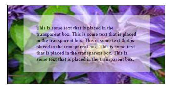 Text-Tranparent-image-in-HTML.png