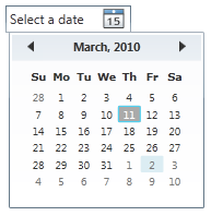 WPF DatePicker Using C#