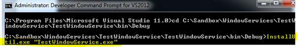 TestWindowService