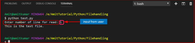 Dot Net Techpoint: File Handling in Python with example