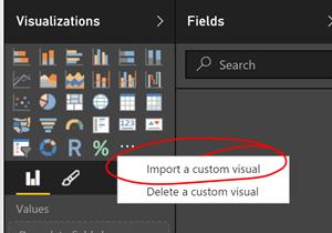 custom visual