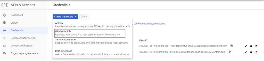 Google API Console Credentials