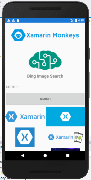 Xamarin Forms - Bing Image Search Using Cognitive Service